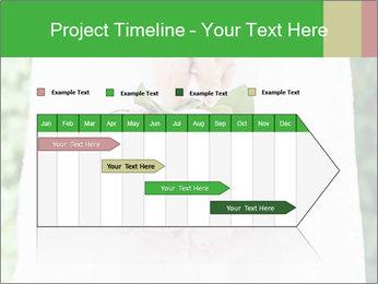 0000094591 PowerPoint Templates - Slide 25
