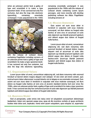 0000094591 Word Template - Page 4