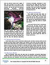 0000094592 Word Templates - Page 4