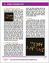 0000094598 Word Template - Page 3