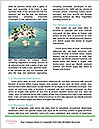 0000094601 Word Template - Page 4
