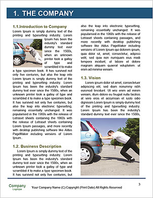 0000094609 Word Template - Page 3