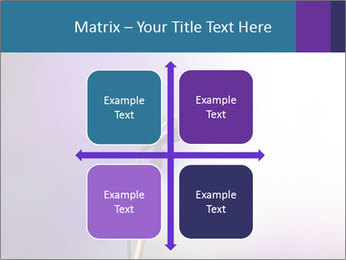 0000094612 PowerPoint Templates - Slide 37