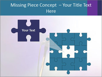 0000094612 PowerPoint Templates - Slide 45