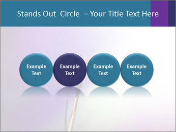 0000094612 PowerPoint Templates - Slide 76