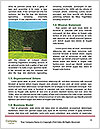 0000094614 Word Template - Page 4