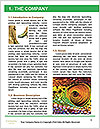 0000094616 Word Templates - Page 3