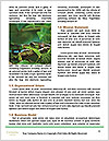 0000094616 Word Templates - Page 4