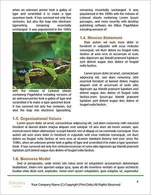 0000094616 Word Template - Page 4