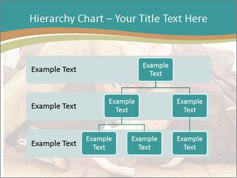 0000094617 PowerPoint Template - Slide 67