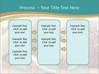 0000094617 PowerPoint Template - Slide 86