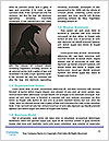 0000094618 Word Templates - Page 4