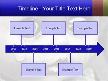 0000094624 PowerPoint Templates - Slide 28