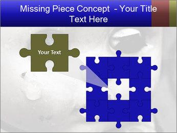 0000094624 PowerPoint Templates - Slide 45
