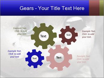 0000094624 PowerPoint Templates - Slide 47