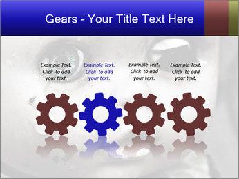 0000094624 PowerPoint Templates - Slide 48