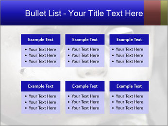 0000094624 PowerPoint Templates - Slide 56
