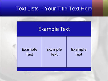 0000094624 PowerPoint Templates - Slide 59