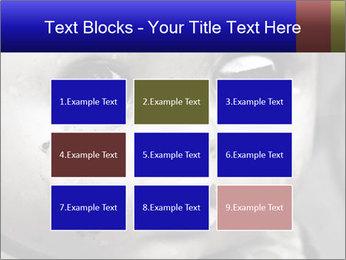 0000094624 PowerPoint Templates - Slide 68