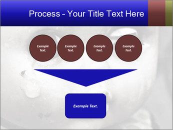 0000094624 PowerPoint Templates - Slide 93