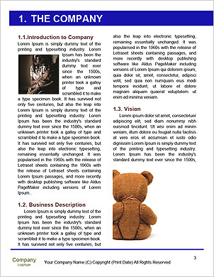 0000094624 Word Template - Page 3