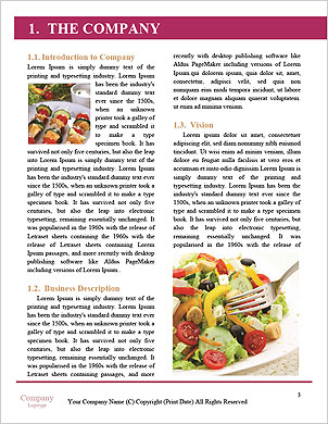0000094625 Word Template - Page 3