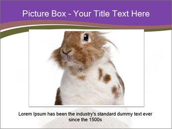 0000094627 PowerPoint Templates - Slide 16