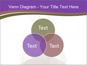 0000094627 PowerPoint Templates - Slide 33
