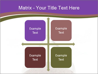 0000094627 PowerPoint Templates - Slide 37