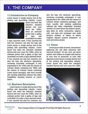 0000094634 Word Template - Page 3