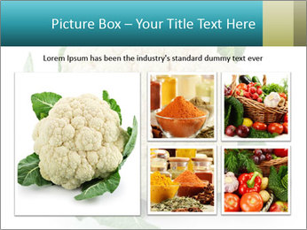 0000094635 PowerPoint Templates - Slide 19
