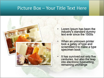0000094635 PowerPoint Templates - Slide 20