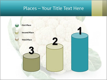 0000094635 PowerPoint Templates - Slide 65