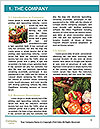 0000094635 Word Templates - Page 3