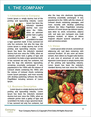 0000094635 Word Template - Page 3