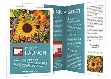 0000094643 Brochure Template