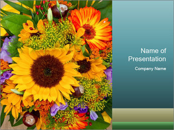 0000094643 PowerPoint Templates - Slide 1