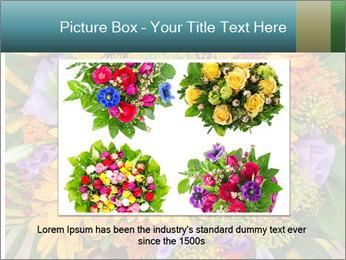 0000094643 PowerPoint Templates - Slide 15