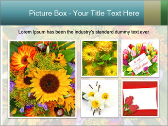 0000094643 PowerPoint Templates - Slide 19