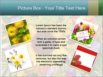 0000094643 PowerPoint Templates - Slide 24