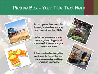 0000094647 PowerPoint Templates - Slide 24