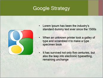 0000094649 PowerPoint Templates - Slide 10