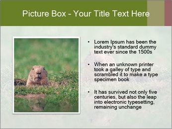 0000094649 PowerPoint Templates - Slide 13