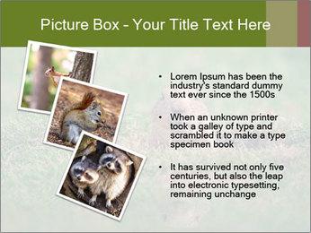 0000094649 PowerPoint Templates - Slide 17