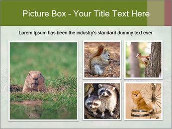 0000094649 PowerPoint Templates - Slide 19