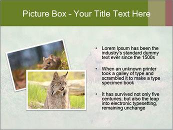 0000094649 PowerPoint Templates - Slide 20