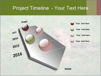 0000094649 PowerPoint Templates - Slide 26