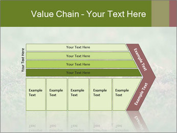 0000094649 PowerPoint Templates - Slide 27