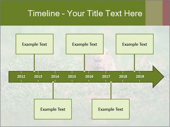 0000094649 PowerPoint Templates - Slide 28
