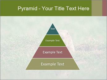 0000094649 PowerPoint Templates - Slide 30